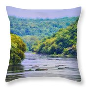 The Potomac Throw Pillow by Bill Cannon