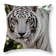 The Power Within Throw Pillow