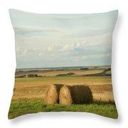 The Prairies Throw Pillow