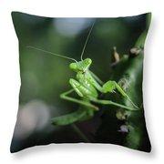 The Praying Mantis Throw Pillow
