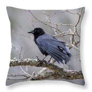 The Preening Crow Throw Pillow