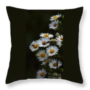 The Promise Of Fall Throw Pillow