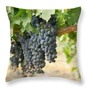 The Promise Of New Wine Throw Pillow