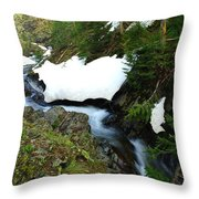 The Promise Of Things Throw Pillow