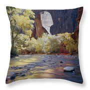 312447-the Pulpit  Throw Pillow