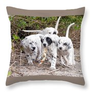 The Puppy's Prize Throw Pillow