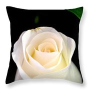 The Purest Of Them All Throw Pillow