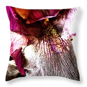 The Purple Lily. Throw Pillow