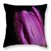The Purple One Throw Pillow by Tracy Hall