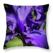 The Purple Show Throw Pillow