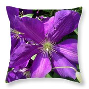 The Purple Sunny Day  Throw Pillow