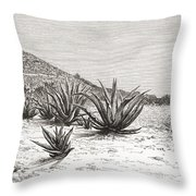 The Pyramid Of The Sun, Teotihuacan Throw Pillow