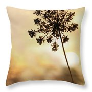 The Queen At Sunrise Throw Pillow