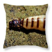 The Queen Of Termites Throw Pillow