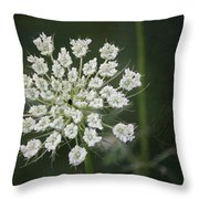 The Queens Lace Throw Pillow