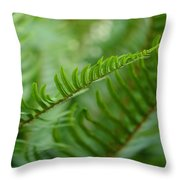 The Quiet Beauty Of Ferns Throw Pillow