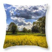 The Quiet Farm Throw Pillow