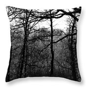 The Rain Throw Pillow