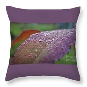 Rain Falls Lightly Throw Pillow