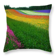 The Rainbow Of Flower At Hokkaido Throw Pillow