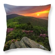 The Rare Light Of Sunset  Throw Pillow