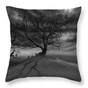 The Raven's Night Throw Pillow