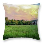 The Ray House Throw Pillow