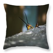 The Real Hopper Throw Pillow