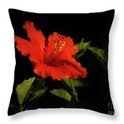 The Red Hibiscus Throw Pillow