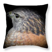 The Red, No. 16 Throw Pillow