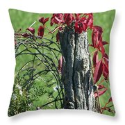 The Red Vine 2 Throw Pillow