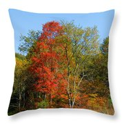 The Reds And Greens Of Autumn Throw Pillow