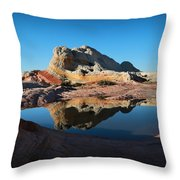 The Reflecting Pool Throw Pillow