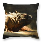 The Reptile World Throw Pillow