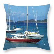 The Restful Voyage Throw Pillow