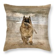 The Retrieve Throw Pillow by Angie Tirado