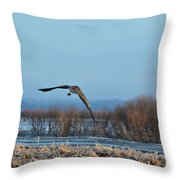 The Return Of Spring Throw Pillow