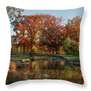 The Rich Autumn Colors In Forest Park. Throw Pillow