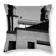 The Rise Of Throw Pillow