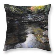 The River At Lady Bagots Throw Pillow