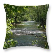 The River In Spring Throw Pillow