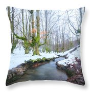 The River In The Otzarreta Forest With Snow Throw Pillow
