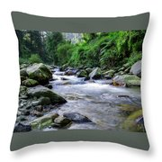 The River Sings Throw Pillow