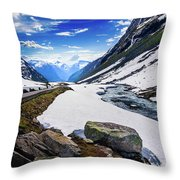 The Road And The Stream Throw Pillow