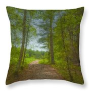 The Road Goes Ever On And On Throw Pillow