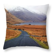The Road In Throw Pillow
