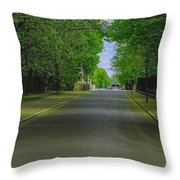 The Road On A Border Of Royal Park Throw Pillow