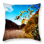 The Road To Awe Throw Pillow