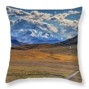 The Road To Denali Throw Pillow