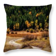 The Road To Fall Throw Pillow